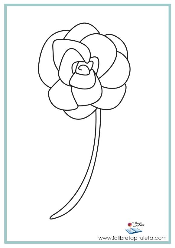 08 COLOREA flor