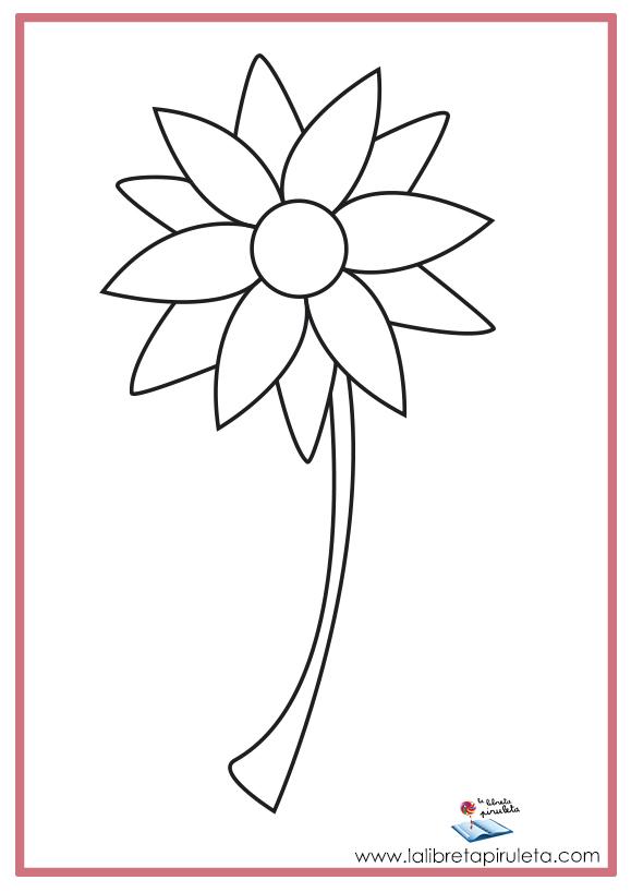 08 COLOREA flores