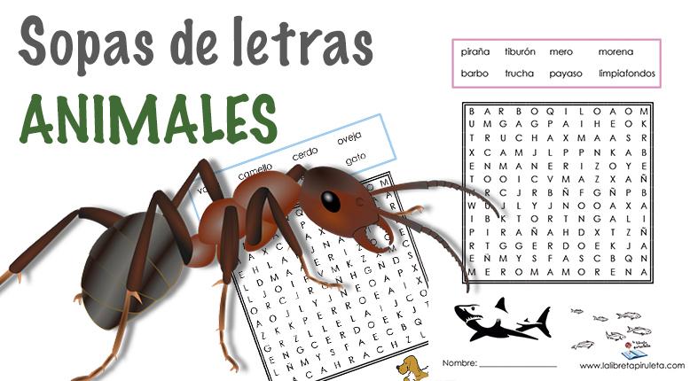 BuSCa AniMAles – SoPas De LetRAs