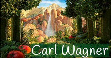 Carl Wagner para niños